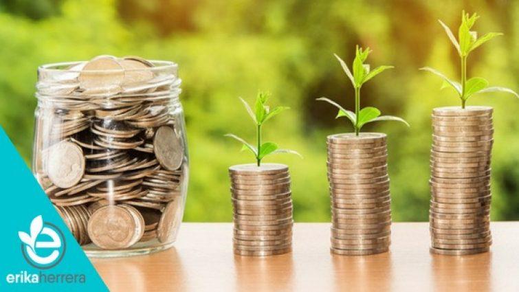 planta-y-monedas-en-crecimiento